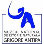 Antipa Natural History Museum Bucharest