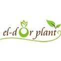eldor plant bucharest
