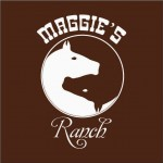 maggies ranch bucharest rasnov kids horse riding